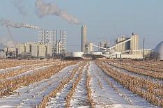Минсельхоз может поддержать проекты глубокой переработки зерна
