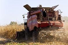 Минэкономразвития прогнозирует сокращение агропроизводства впервые с 2012 года