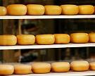 Владелец группы «Дело» инвестирует впроизводство сыров