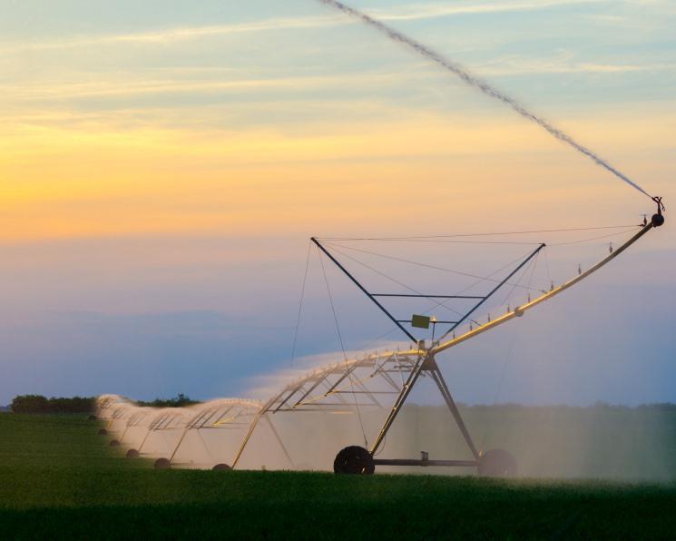 Ни капли мимо дохода. Аграрии выращивают на поливе картофель, овощи, сою и кормовые агрокультуры