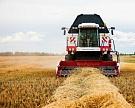 Росстат повысил урожай зерна до 120,7 млн тонн