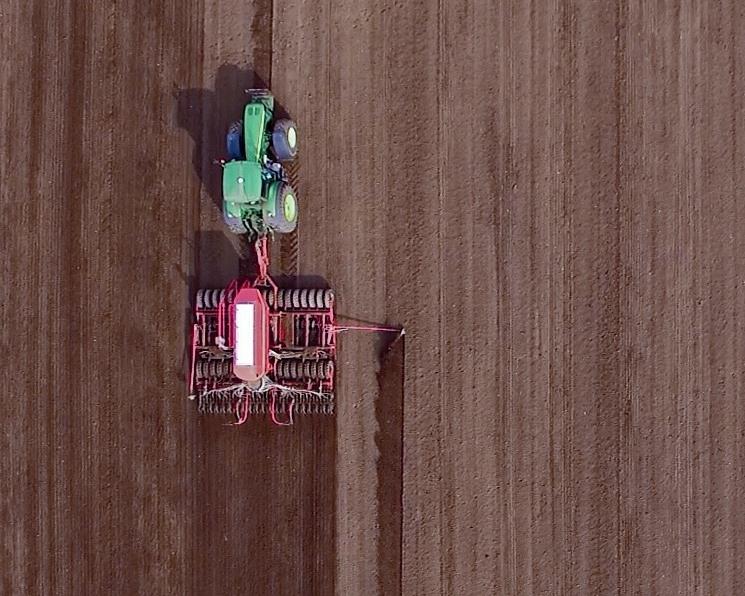 Аналитики снижают прогнозы урожая зерна