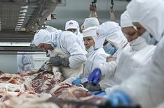 20 крупнейших компаний выпустили 2,7 млн тонн свинины