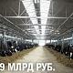 «Молоко Черноземья» построит самую крупную ферму вВоронежской области