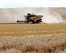 МСХ скорректировал прогноз урожая зерна до80?85 млн т