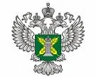 В России в феврале зафиксировано 11 вспышек АЧС