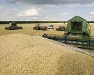 Сбор зерна достиг 109,8 млн тонн, пшеницы – 74,2 млн тонн