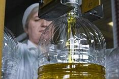 Подсолнечное масло экспортируется рекордными темпами