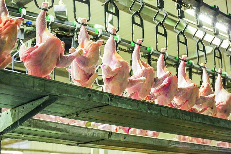 Итоги года в мясном секторе