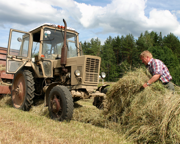 Колхозная история. Как из убыточных хозяйств сделать эффективное производство
