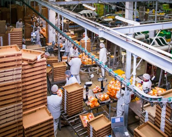Разделяй и зарабатывай: производители мяса идут в переработку за дополнительной маржой