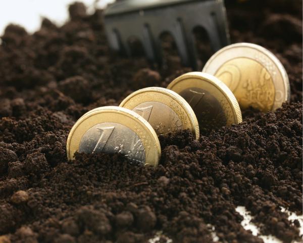 Деньги на гектар: в среднем аграриям платят 300руб./га
