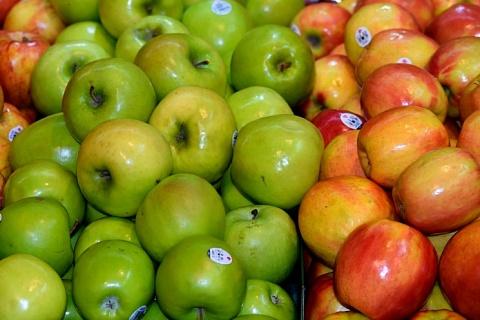 Россия остается крупнейшим импортером яблок и груш