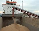 Экспорт зерна в июле вырос на 13% до 3,6 млн тонн