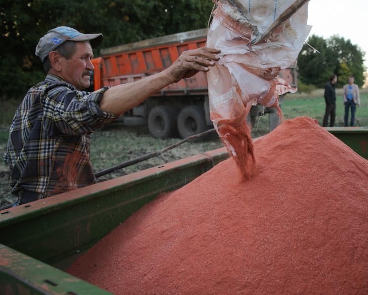 Потребление минеральных удобрений в мире увеличится на 0,8%