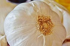 «Мираторг» начал выращивать чеснок