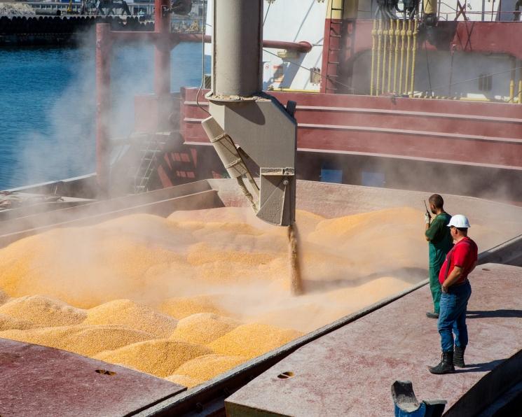 Ценовой диспаритет увел экспорт в минус. В первой половине сезоне-2019/20 за рубеж поставлено 24,8 млн тонн зерна