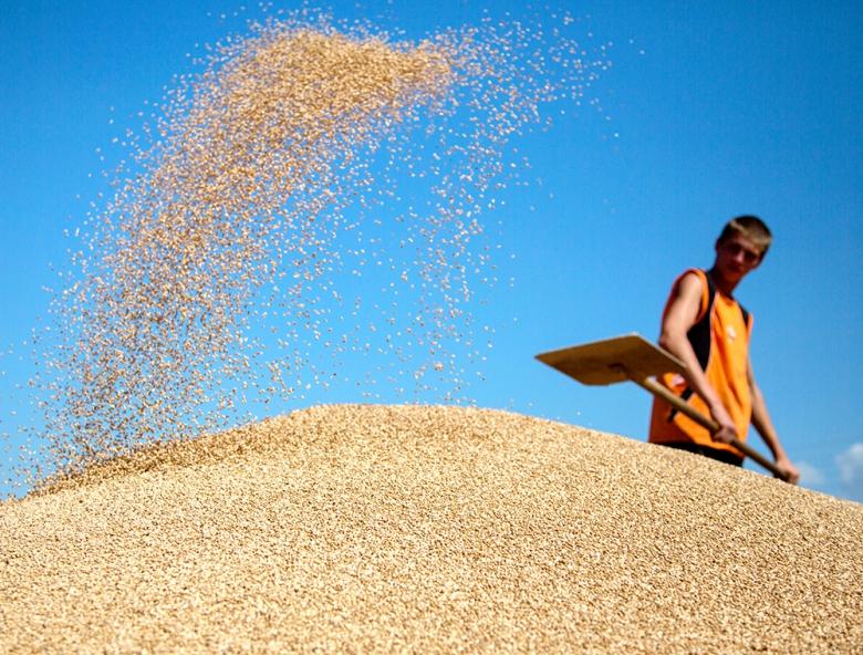 Мировой баланс зерна в сезоне-2015/16