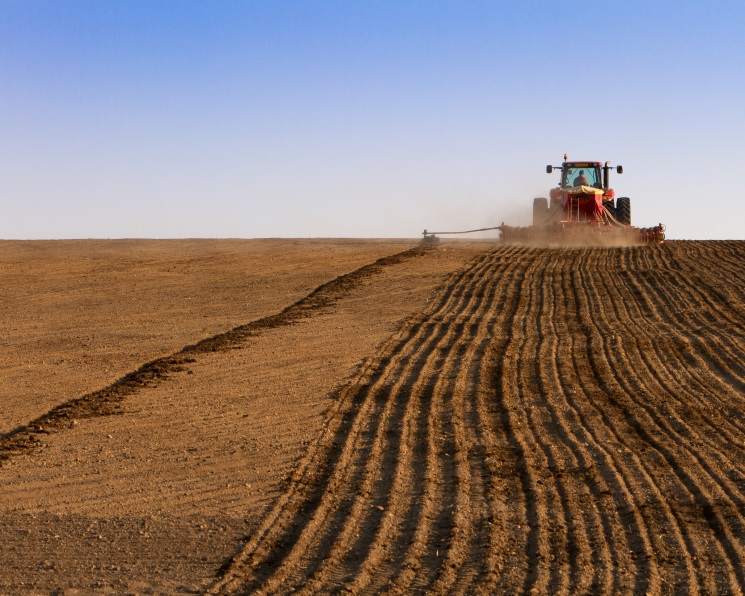 В оборот введено более 1,6 млн гектаров пашни