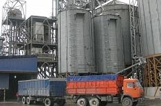 Ограничение экспорта может привести к снижению производства зерна