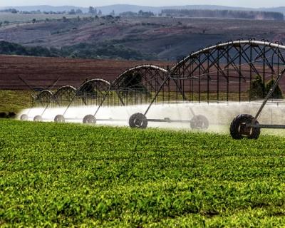 Новая технология полива снижает потребление воды вдвое