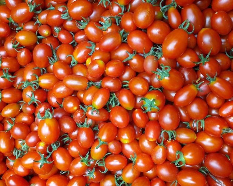Россия снимает ограничения наимпорт турецких томатов