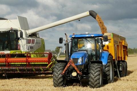 Урожай зерна на Ставрополье может снизиться на 30%