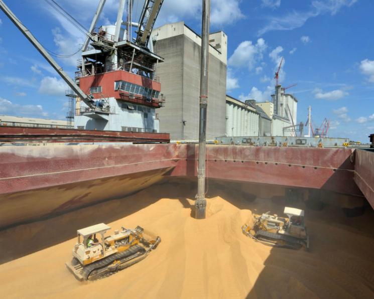Экспорт зерна на29% превышает прошлогодний темп