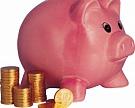 «Русагро» может вложить 20 млрд рублей в свиноводство