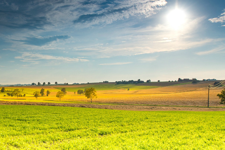 Аудиторско-консалтинговая компания BEFL опубликовала новый рейтинг крупнейших владельцев сельхозземель в России по состоянию на апрель 2017 года