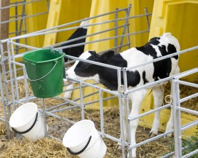 «Агрокомплекс» им.Н. Ткачева планирует построить ферму на2,8 тыс. дойных коров вРостовской области