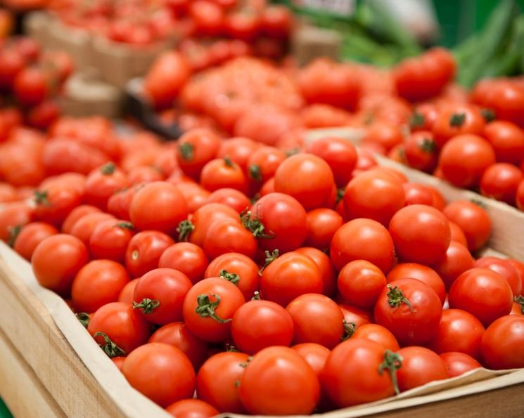 Плодоовощной союз просит запретить импорт томатов