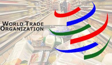 Россия подписала протокол оприсоединении кВТО