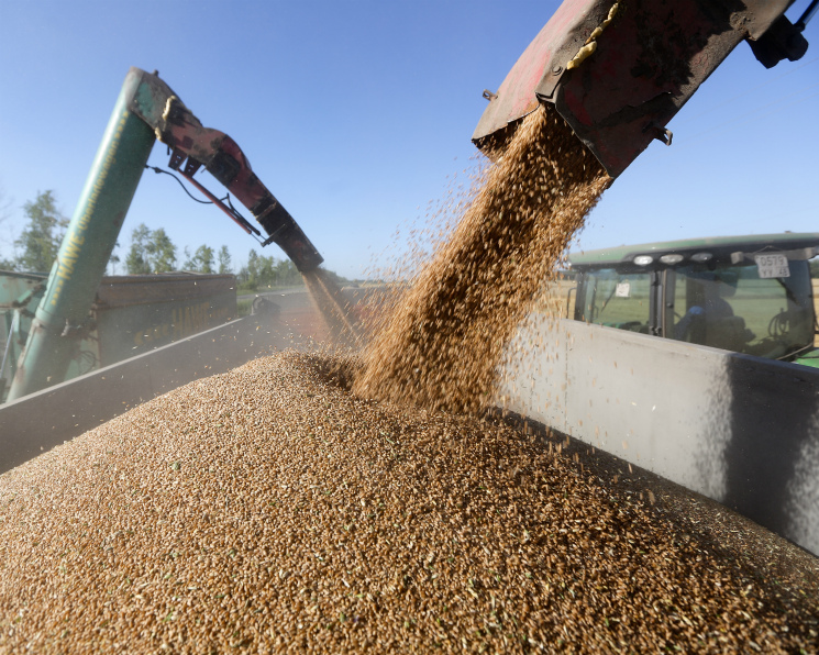В 2018 году сельское хозяйство вырастет меньше чем на 1%