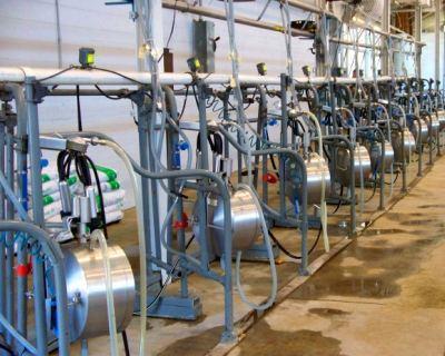 «Бетонинвест» планирует ввести молокозавод