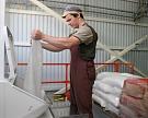 Россия наращивает экспорт сахара