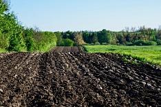 Агрохолдинг из топ-10 латифундистов перешел в фонд плохих долгов