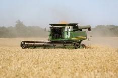 Алексей Гордеев: урожай будет среднестатистическим