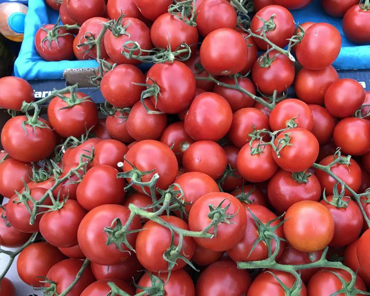 Турецкие томаты могут появиться наприлавках ксередине ноября