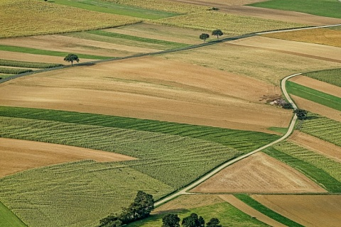 Центробанк может получить 150 тысяч гектаров сельхозземель