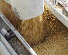 Минсельхоз не исключает роста экспорта зерна до 40 млн тонн