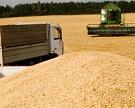 Обсуждать ограничения поэкспорту зерновых преждевременно