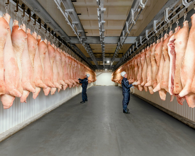 Топ-20 крупнейших производителей свинины поитогам 2016 года