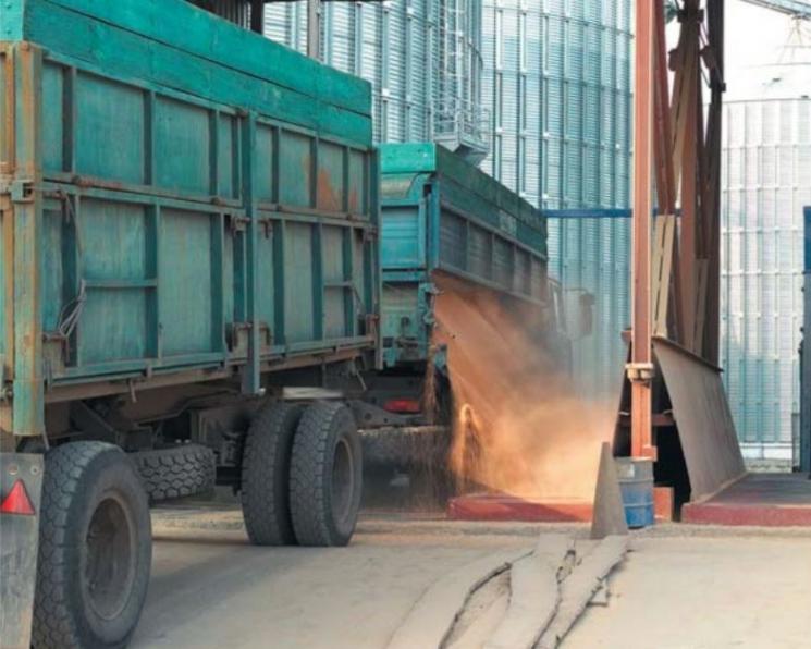 На перевозку зерна внутри страны могут ввести карантинные сертификаты