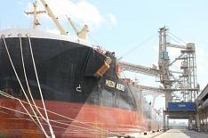Экспорт зерна за первые три месяца сезона превысит 15 млн тонн