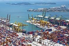 Китайская корпорация построит зерновой порт в Хабаровске