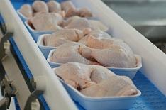 10 крупнейших компаний выпустили 58% мяса бройлера в стране
