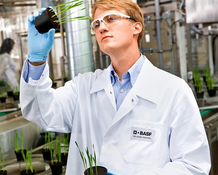 BASF купит долю бизнеса Bayer попроизводству гербицидов исемян