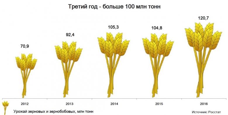 Зерновые и зернобобовые
