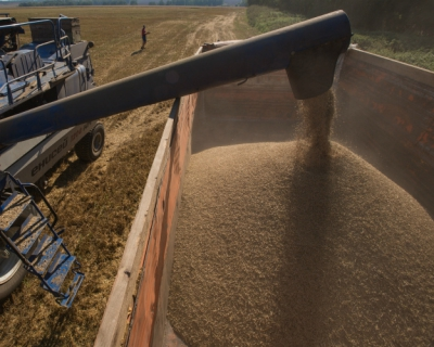 Регионы-лидеры по сбору зерна